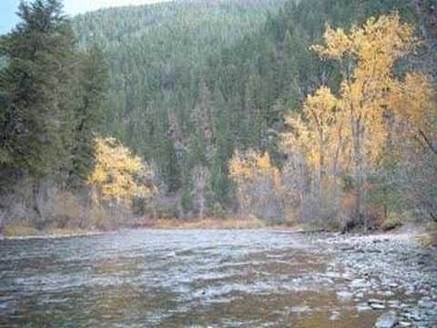 Fly-Fishing in Missoula, Montana