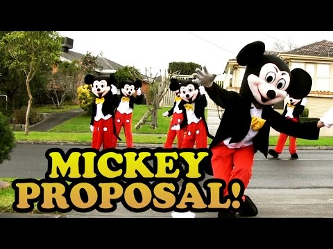 Mickey Mouse Proposal! (Jehan & Vish 2014)