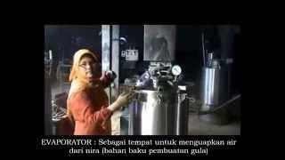 Download Lagu Mesin Produksi Gula Semut (Gula Merah Powder/Kristal) dengan sumber energi dari boiler Gratis STAFABAND