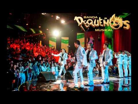 Banda Pequeños Musical En México Suena 2013 ( COMPLETO )