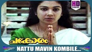 Best Malayalam Song From Chakoram |  Naattu Maavin Kombile..