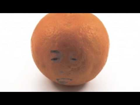 A Tribute to the Annoying Orange