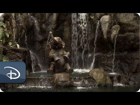 Highlighting Disneyland Park Horticulture: Jungle Cruise | Disneyland Resort | Disney Parks