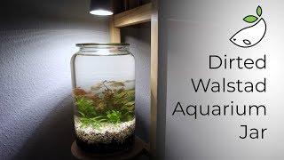 How To - Dirted Walstad Aquarium Jar
