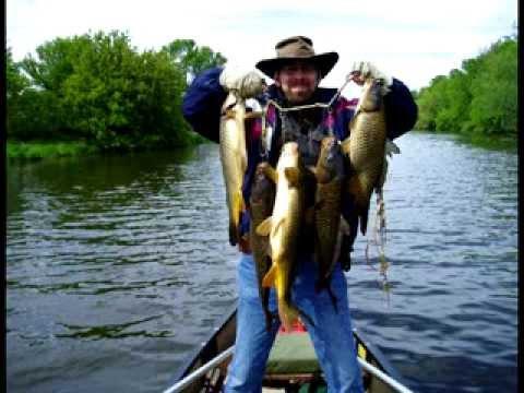 Beaver dam river se wi rough fish youtube for Beaver lake fishing guides