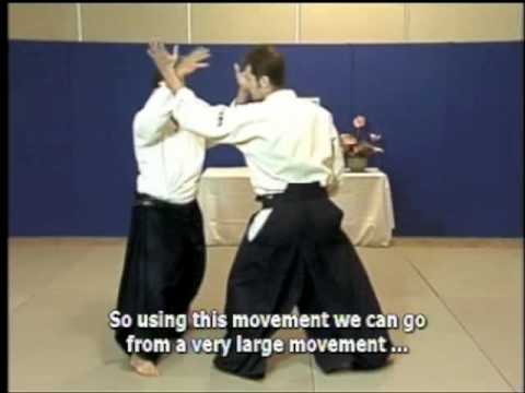 Special Aikido demonstration by Christian Tissier Shihan Image 1