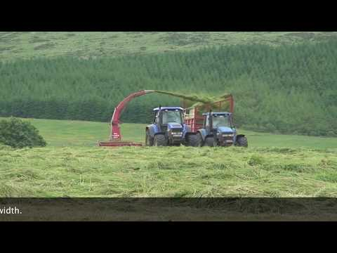 SILAGE HARVESTING 2011 New Holland TM 175 & Trailed JF-Stoll Trailed Harvester