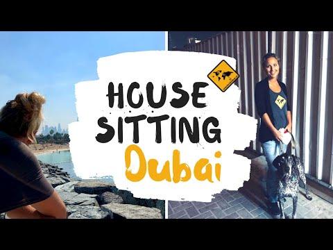 House Sitting in Dubai // Erfahrungen & Tipps