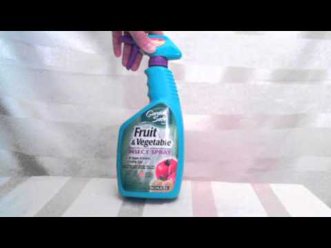 Garden Safe Fruit and Vegetable insect spray from Schultz