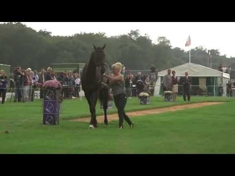 Land Rover Burghley Horse Trials 2014 - Day 1, Trot Up