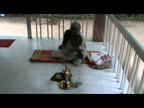 Serpant Music Video | Pulluvan Pattu Sung Using Pullorkudam video
