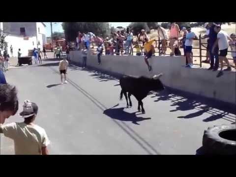 Largada de touros na Terrugem 2014