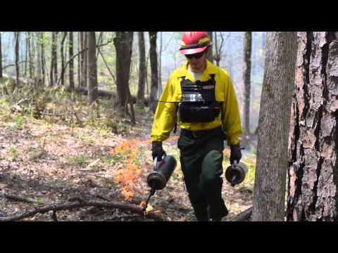 Piedmont National Wildlife Refuge Prescribed Fire Program
