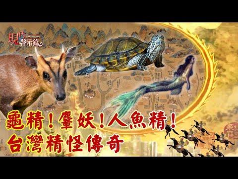 台灣-現代啟示錄-20201023 龜精!麞妖!人魚精! 台灣精怪傳奇