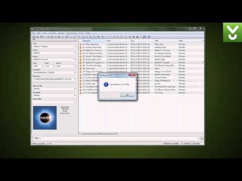 Mp3tag - Batch edit MP3 tags and metadata - Download Video Previews