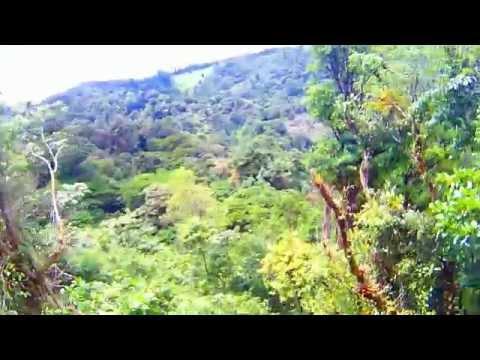 ZiplineZipline - 100% Aventura - Canopy Tour - Costa Rica - Santa Elena HD