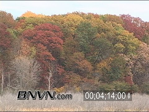 Various Fall Color Footage From The St. Croix River Valley from October 2006, Part 1 of 4