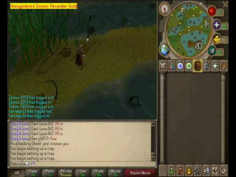 Runescape 1-99 Hunter Guide (Best Exp/Cash Rate)