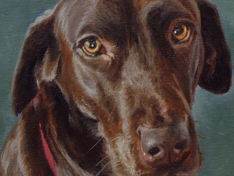"og portrait, oil painting of Brown Labrador ""Cody"" time-lapse, speed-painting"