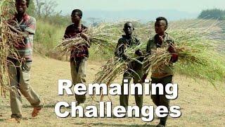 Ethiopia's Poverty Reduction Successes - በኢትዮጵያ የድህነት ቅነሳ ፕሮግራም መሳካት
