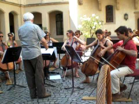 The Pirates of the Caribbean with the 15 cellos of EUYO 2009