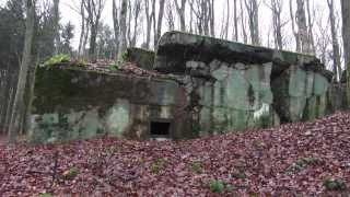 Vergessene Orte - Westwall - Siegfried Line - Hitler - Bunker 0841 - lost places germany