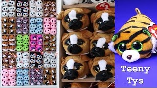 Ty Teeny Tys Full Display Set Up Ty Beanie Boo Doll Collection Beanie Boos