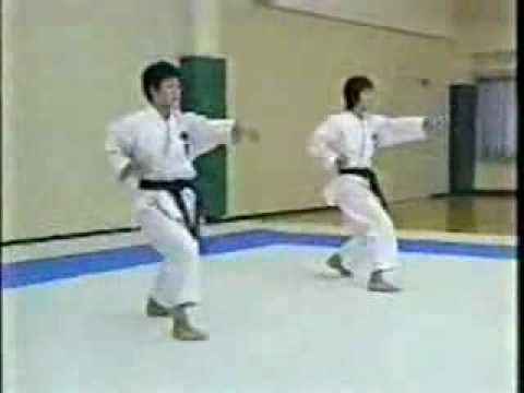 Karate Shotokan - Jka - Kihon video