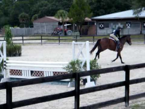 Rockstar Zone 4 finals Fox Lea farm, Call Ann Pennington 239 850 2085 Video
