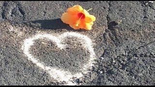 Roger Shah & LeiLani - Love Heals You (Video Mix)