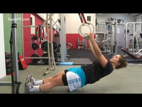Weight Training Fitness Workout - Inverted Row on Rings Image 1