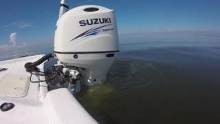 Suzuki 200ap