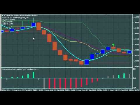 5 minute binary option trading