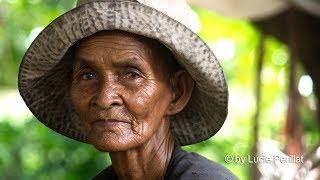 Cambodia Sticky Rice Farmers