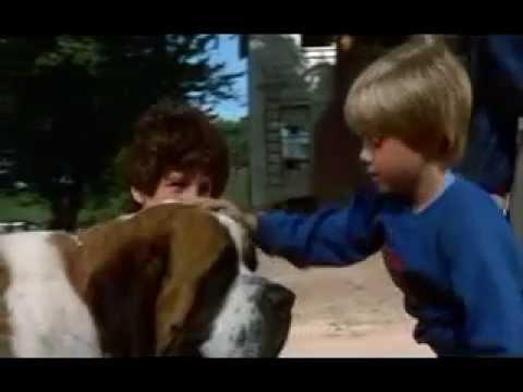 Cujo The Dog Movie Trailer