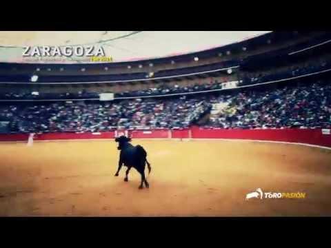 Toropasión - Emoción, valor y espectáculo en los festejos populares de Zaragoza 2014