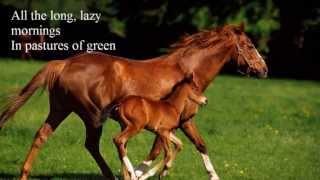 Download Lagu Run for the Roses. Dan Fogelberg. (1982) Gratis STAFABAND