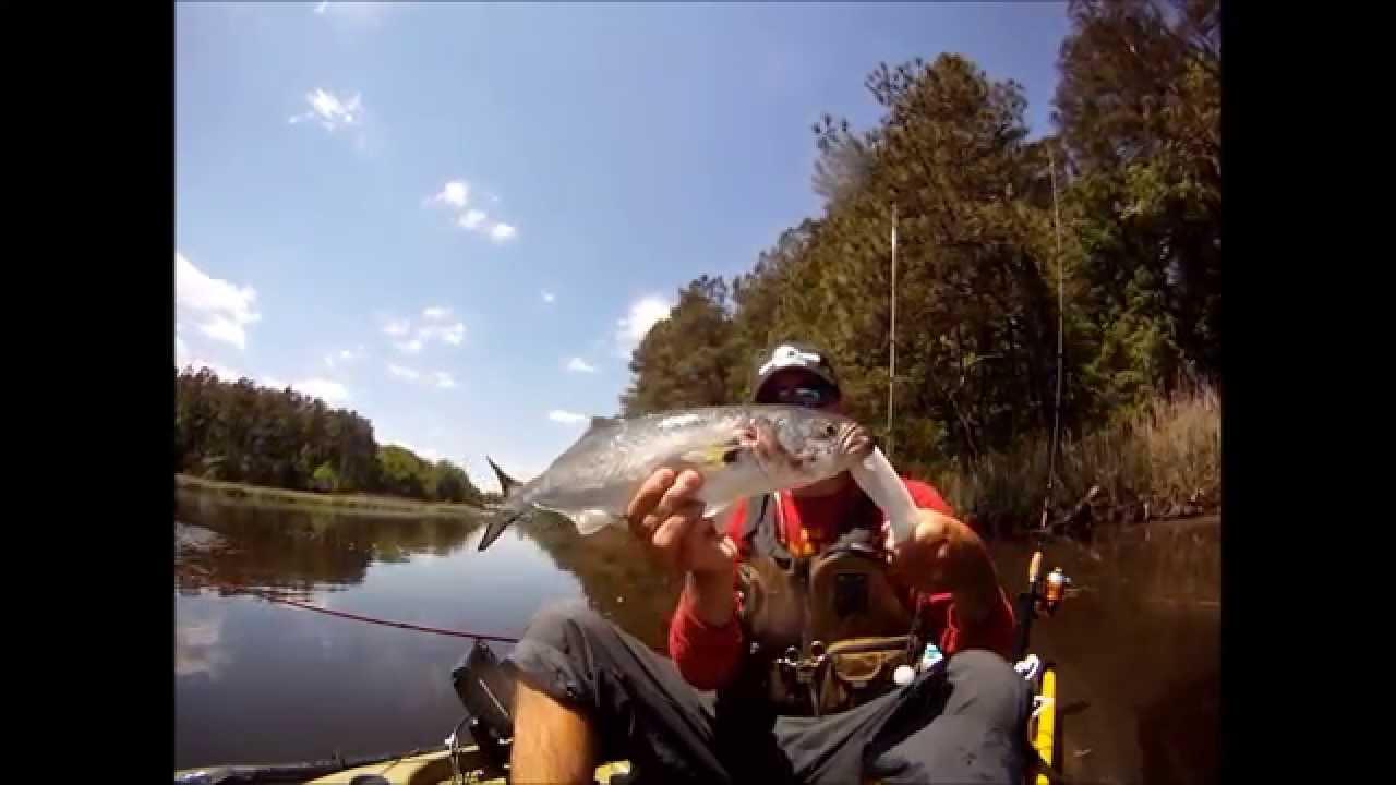 Rudee inlet kayak fishing youtube for Rudee inlet fishing report
