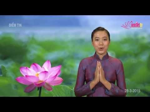 Tin Phật Giáo Video SenViet TV 156