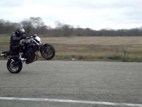 stunt fz6 s2