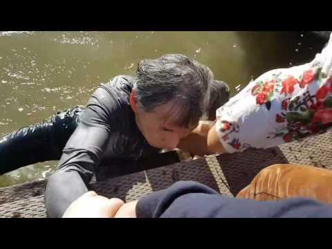 NIÑA ASIÁTICA CASI MUERE AHOGADA POR ATAQUE DE LEÓN MARINO!!! HD