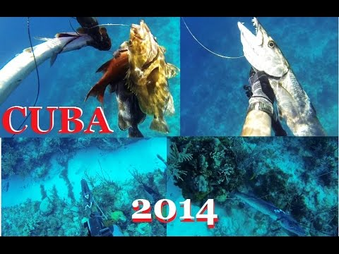 Spearfishing CUBA - PART 1 - Grouper and Barracuda Picua - Pesca submarina Apnea