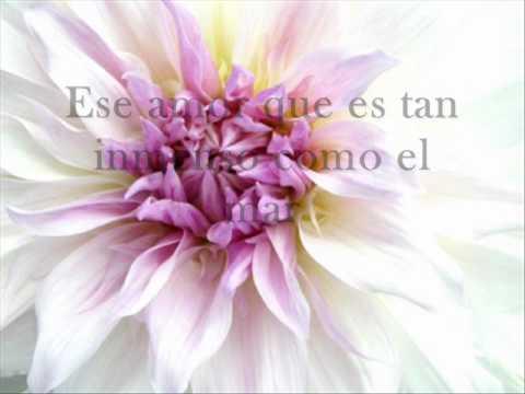Amor Incomparable - Ruth Ramírez