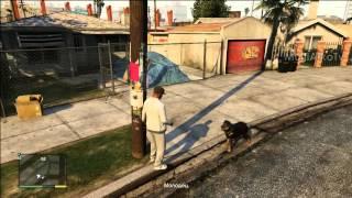 GTA 5 Первая прогулка с Чопом | dog chop