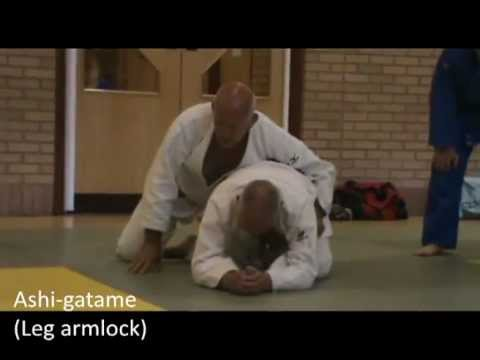 Judo - Submission techniques demonstrated by Peter Blewett (7th Dan)_1 Image 1