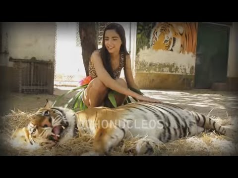 Katy Perry - Roar (oficial Version Ochonucleos) video