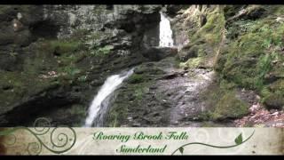 Western Ma Waterfalls by Island Dog Studios
