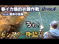 春イカ爆釣祈願作戦後編【Draw4 special movie Vol.26】