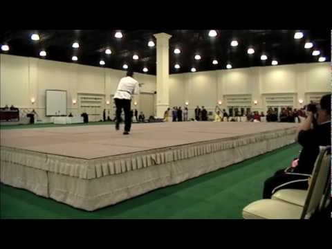 Raz Baji Quan Master Demonstration Image 1