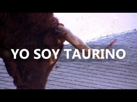 TOROS SIETEIGLESIAS DE TRABANCOS  II Toro del Arrope 2012